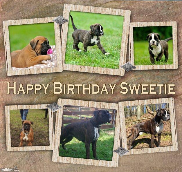 Happy Birthday Sweetie Collage - 2zxDa-3tiHZ - normal